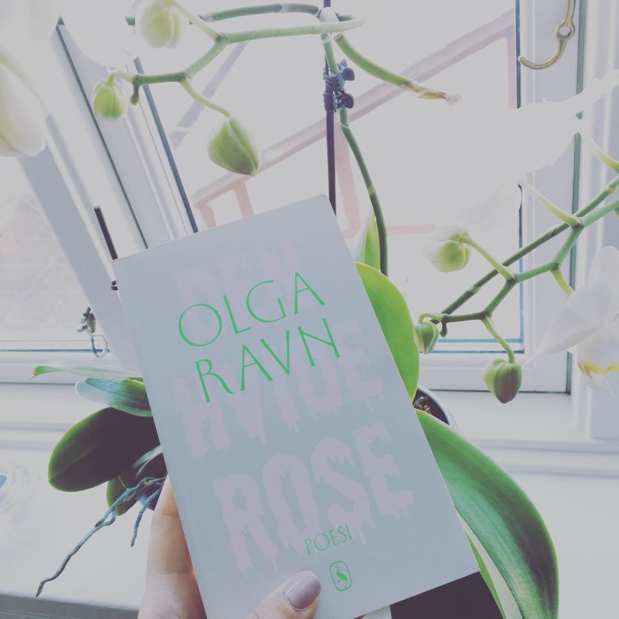 Boganmeldelse: Olga Ravn – Den hviderose