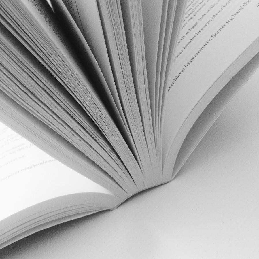 Litteraturreportage: Aftenen indenafgørelsen