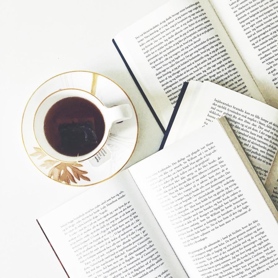 Smagskriterier og litterærvurdering