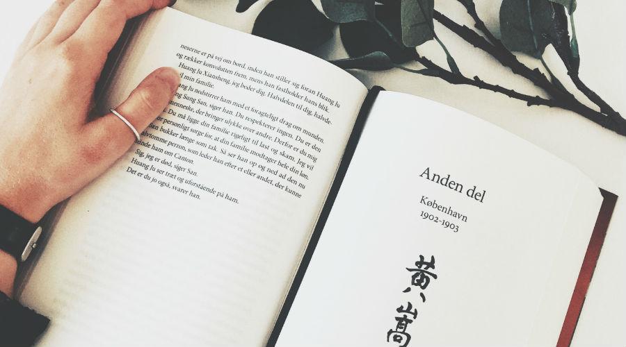 Boganmeldelse: Jesper Wung Sung – En andengren