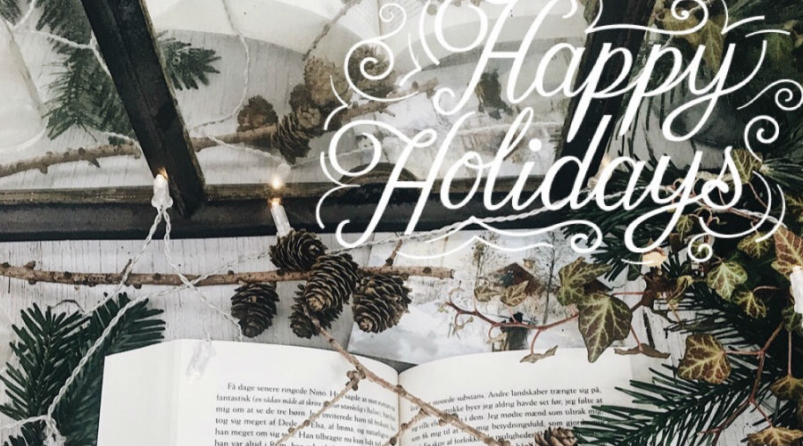 Merry Christmas // the classic book tag